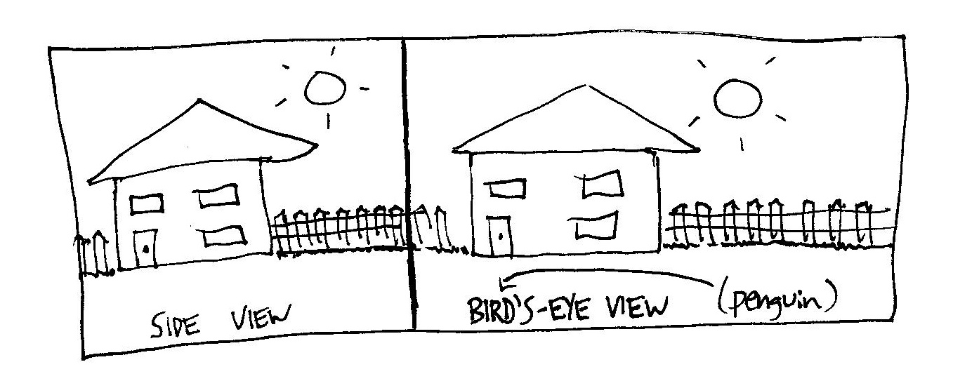 Bird's-eye view